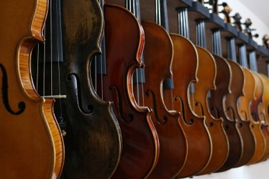 violin-516023_1280